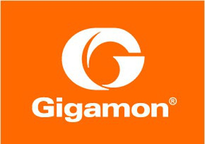 The Gigamon logo.