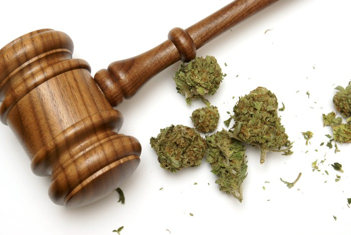 A wooden gavel resting next to marijuana buds.