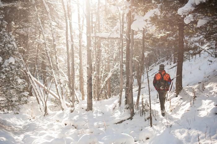 Hunter walking through snow-covered woods.