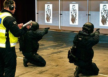Cubic Weapons Training IS Cubic Corp