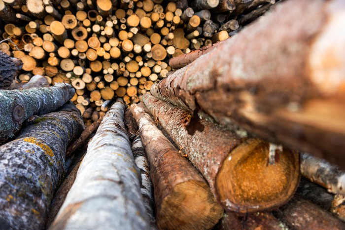 Raw lumber in a large pile.