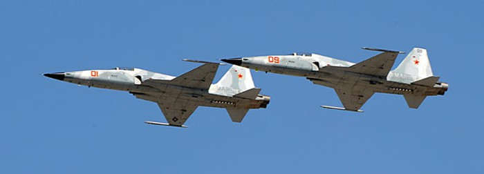 Two F-5 Tiger II aircraft's flying.