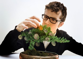 Man picking money out of tree dividends income