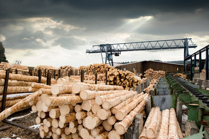 Stacks of logs at a sawmill.
