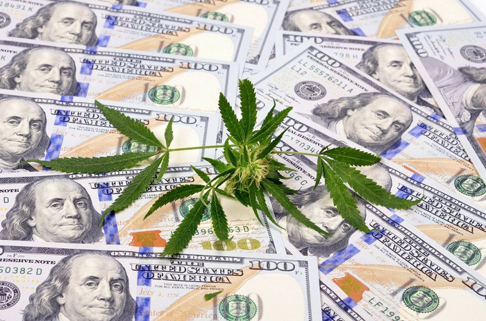 Marijuana leaf on pile of hundred dollar bills