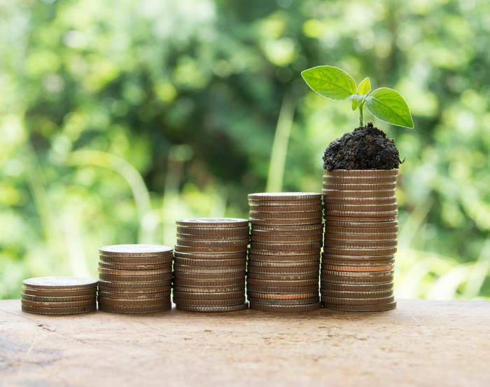 Stacks of coins on a table with a small plant on top of the tallest stack.