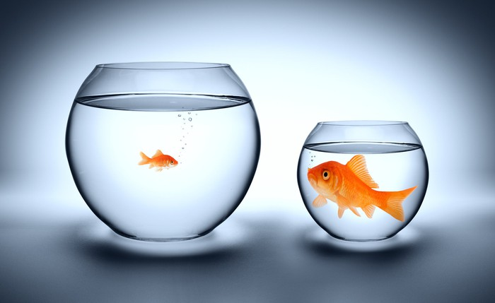 A small fish swims in a big jar, while a big fish sits in a small jar.