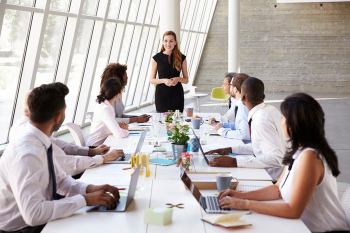 Businesswoman presenting to colleagues at long table in sunny conference room