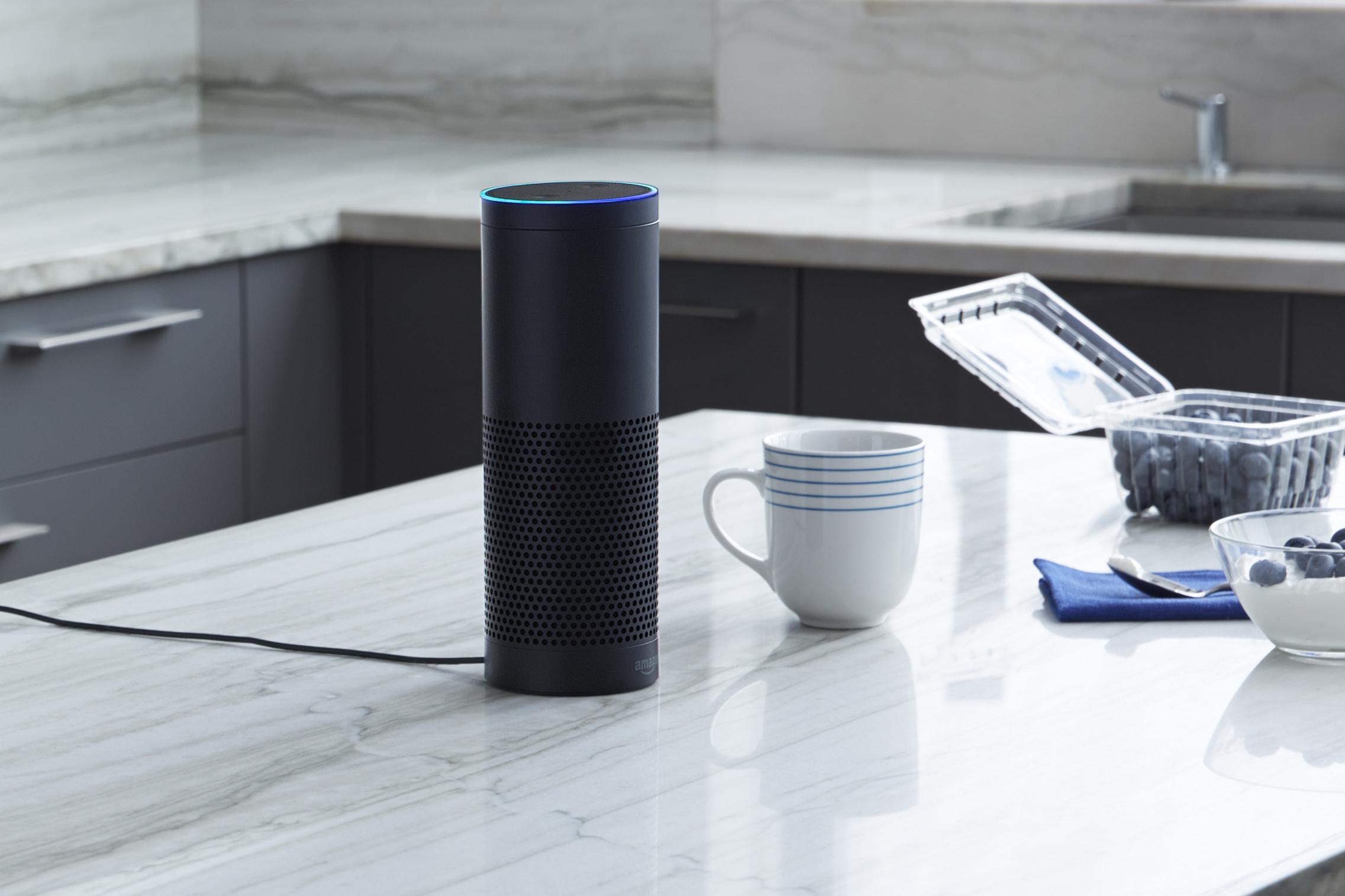 An Amazon Echo speaker sitting on countertop.