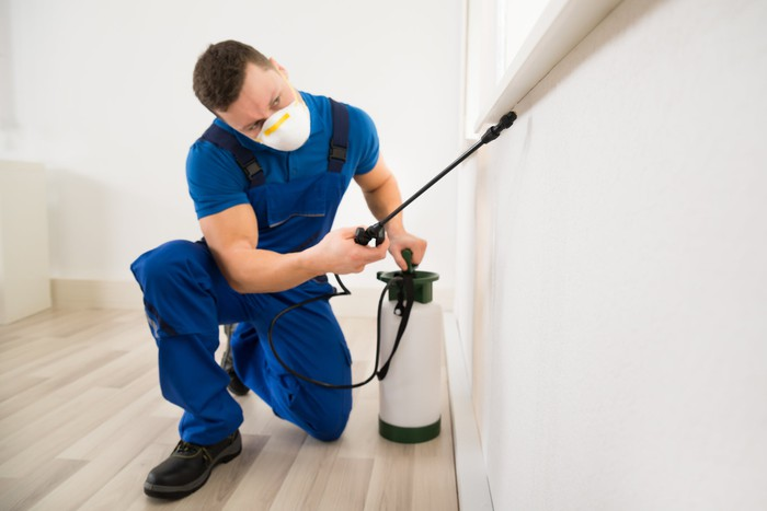 Pest control professional spraying