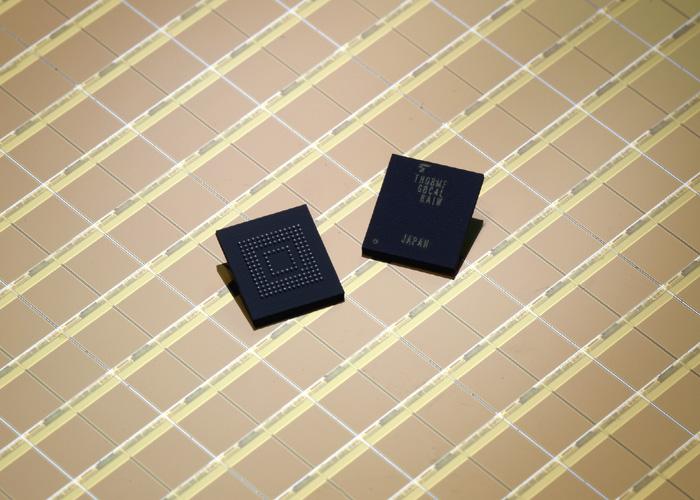 Toshiba memory chips.