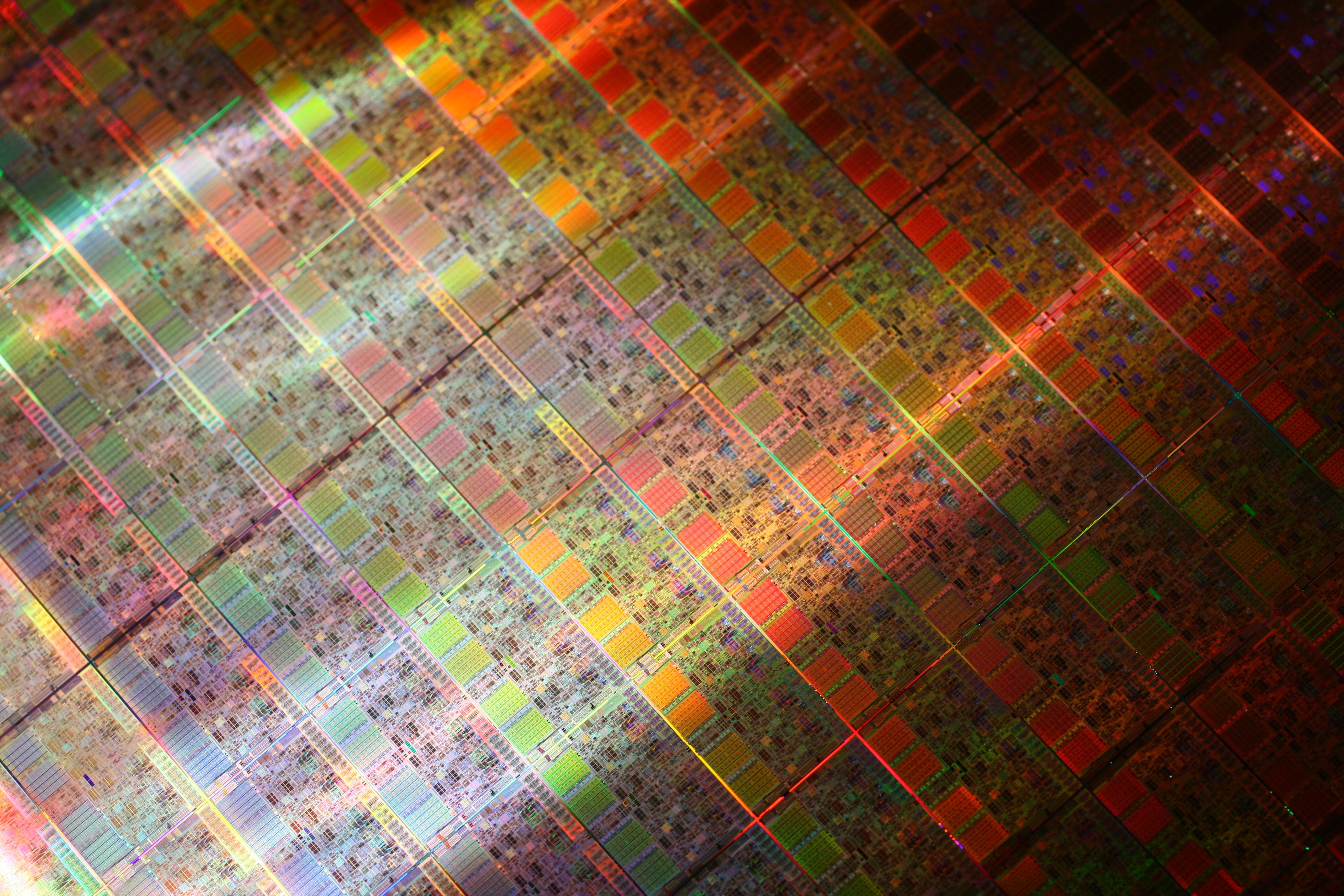 A wafer of Intel Xeon processors.