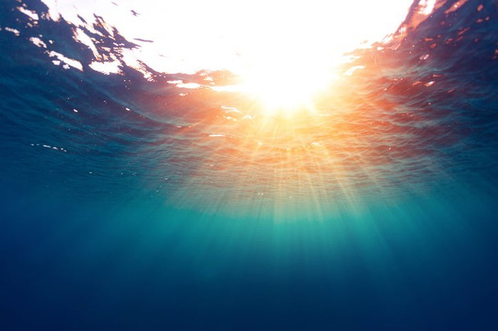 A view of the sea surface from underwater.