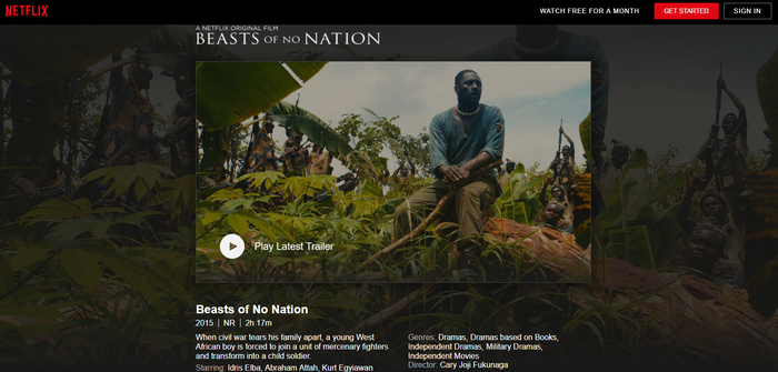 Description of movie Beasts of No Nation.