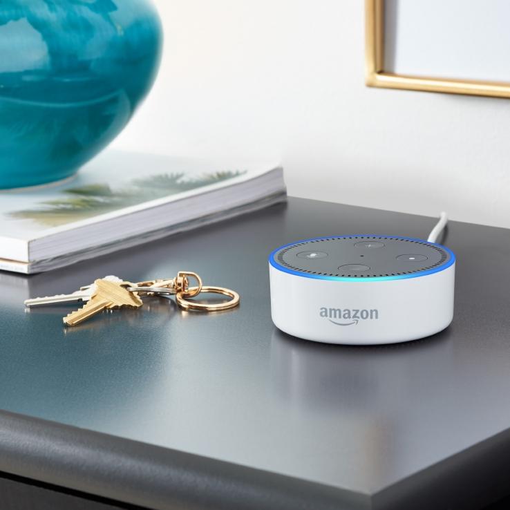 A white Echo Dot smart speaker on a shelf.