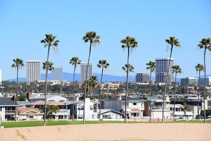 A beach and palm trees in the foreground in Orange County, California.