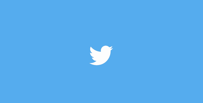 Twitter white bird on blue background.
