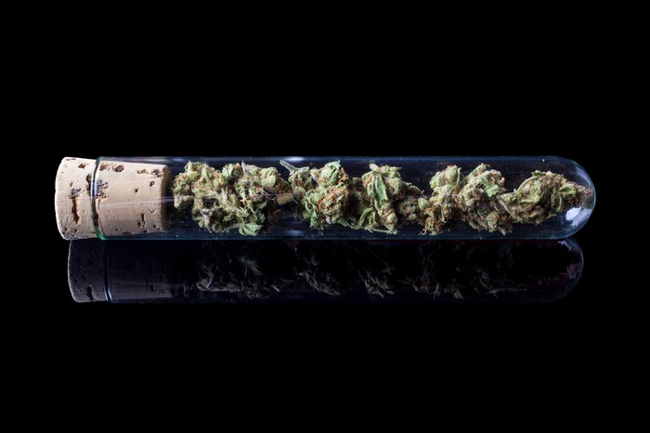 Marijuana buds in test tube against black background