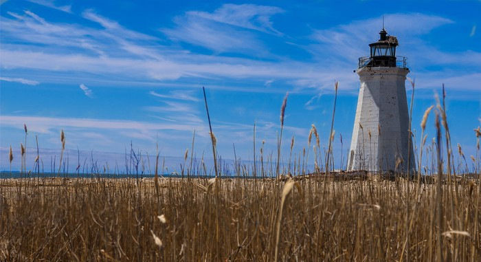 a lighthouse with a field in the foreground