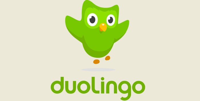 Duolingo's green owl and company name