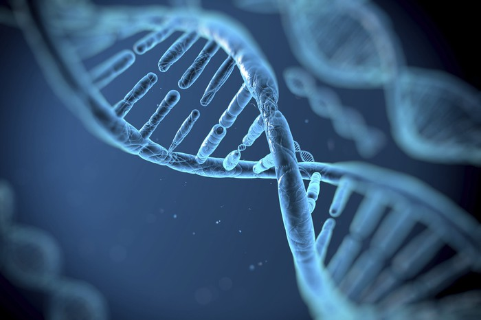 A portrayal of a strand of DNA.
