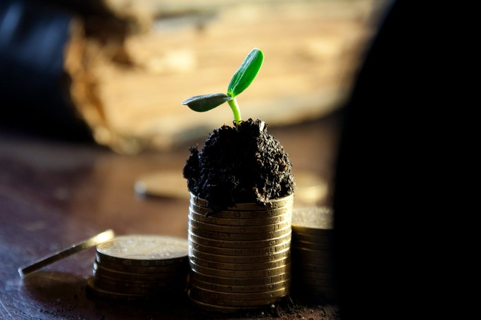 A plant appearing to grow out of coins.