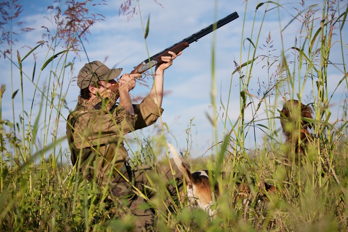 Hunter with shotgun in the field