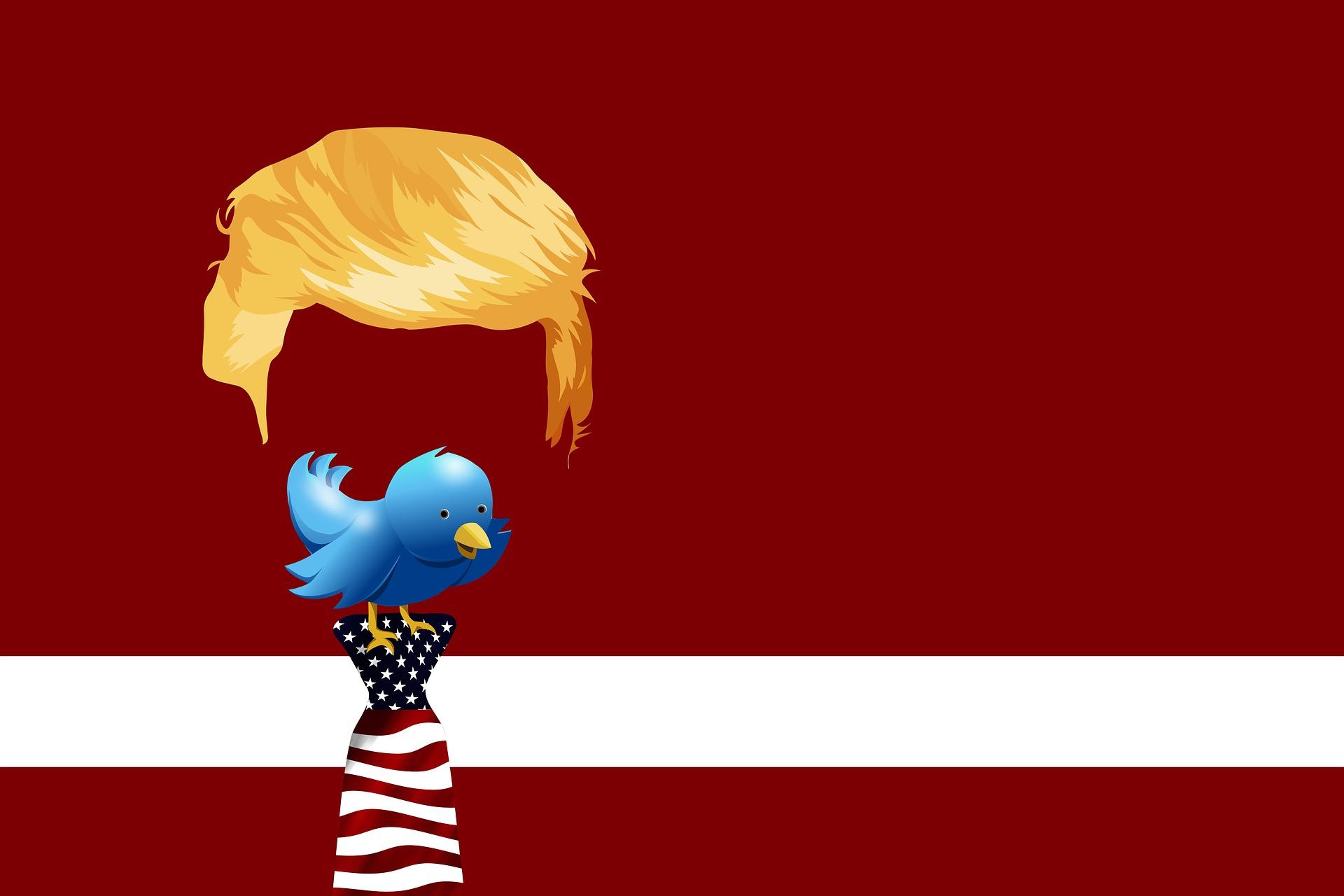 Trump's hair above a blue bird standing on an American flag tie