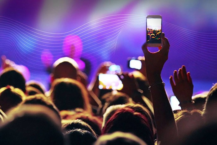 Person in a crowd, holding up a smartphone to take a picture.
