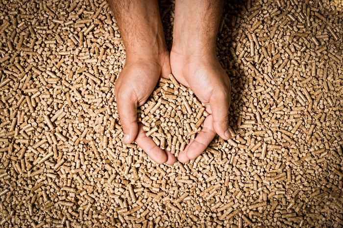 Hands holding wood pellets