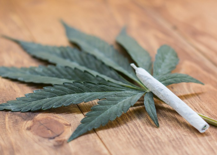 A cannabis leaf on a table next to a rolled cannabis joint.