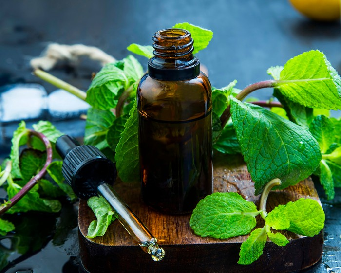 A bottle and eye dropper of essential mint oil, surrounded by mint leaves.