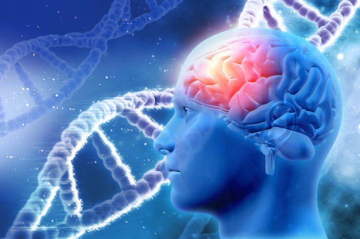 A digital illustration of a brain inside a human head, with strands of DNA in the background.