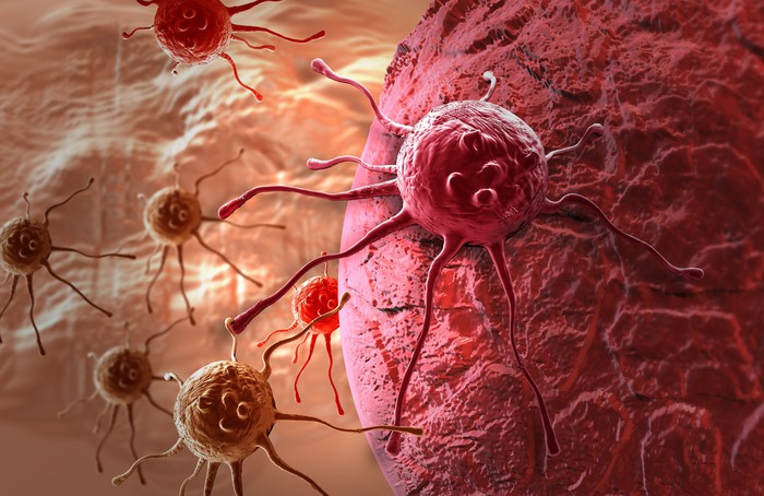 Image of a cancer cell.