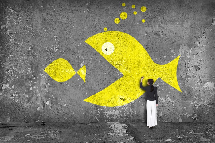Graffiti artist painting one large fish swallowing a smaller one, both in yellow on a gray concrete wall.