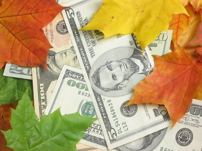 Five, 20, and 100-dollar bills scattered among fall leaves