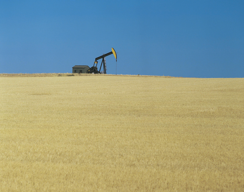 A lone oil pump in a field.