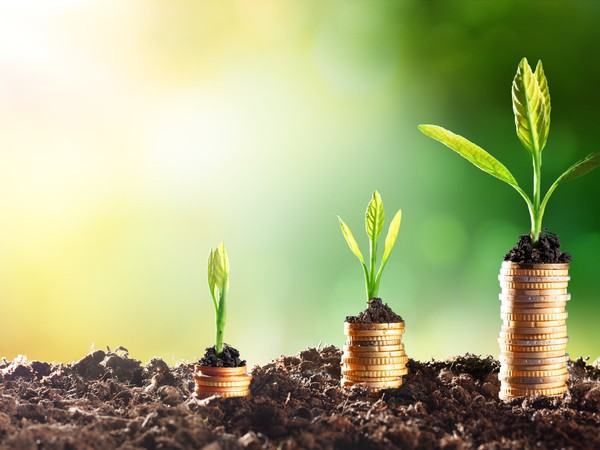Growing plants on a stack of coins -- GettyImages-506181336