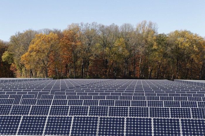 Utility scale solar farm with trees and a blue sky in the background.