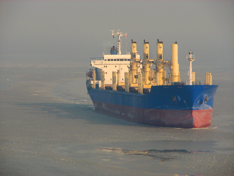 Dry bulk cargo ship