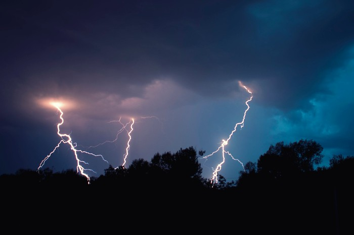 Three bolts of lightning strike behind silhouetted trees.