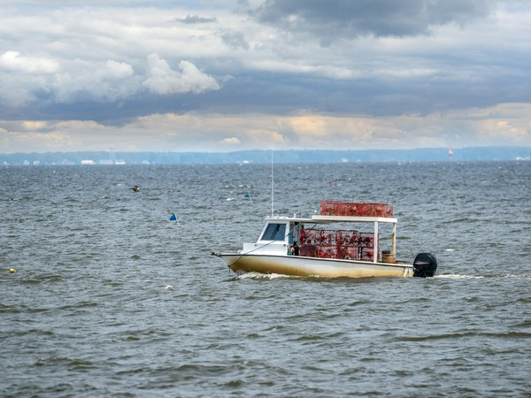 Maryland crab boat GettyImages-605782578
