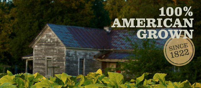 "Older farm house with tobacco growing in foreground and logo ""100% American Grown Since 1822."""