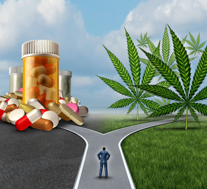 A man standing at a fork in the road. One path leads to prescription pills, and the other to cannabis leaves.