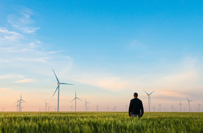 Man standing in a wheat field, looking at wind turbines in the distance.