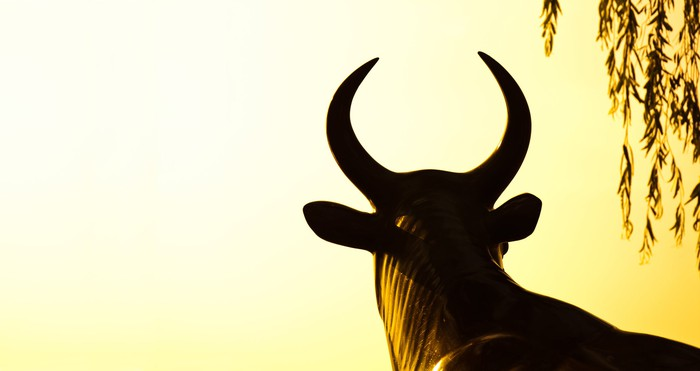 A bull facing away into a yellow background.