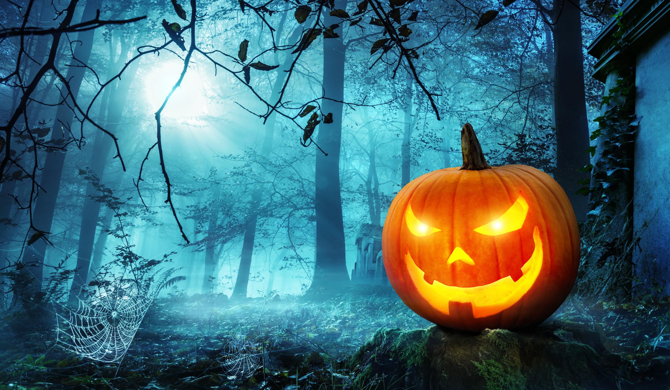 Jack o' lantern in woods at night