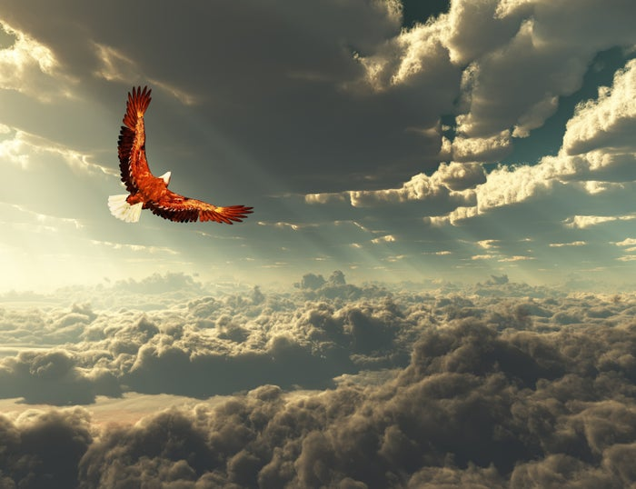 An eagle soaring over the clouds