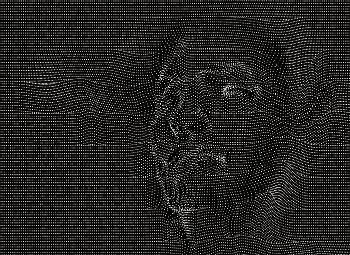 A silhouette of a human face on a black background.