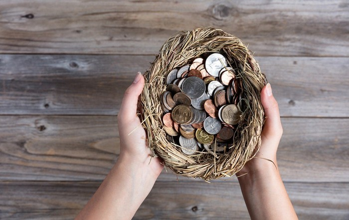 Hands hold a nest filled with coins.